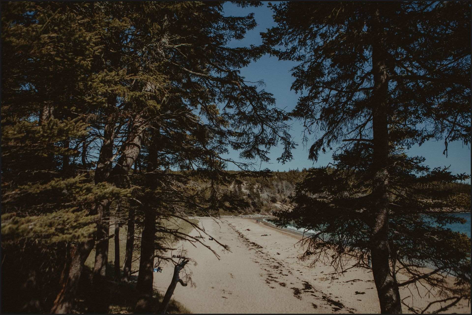 landscape, maine, acadia national park