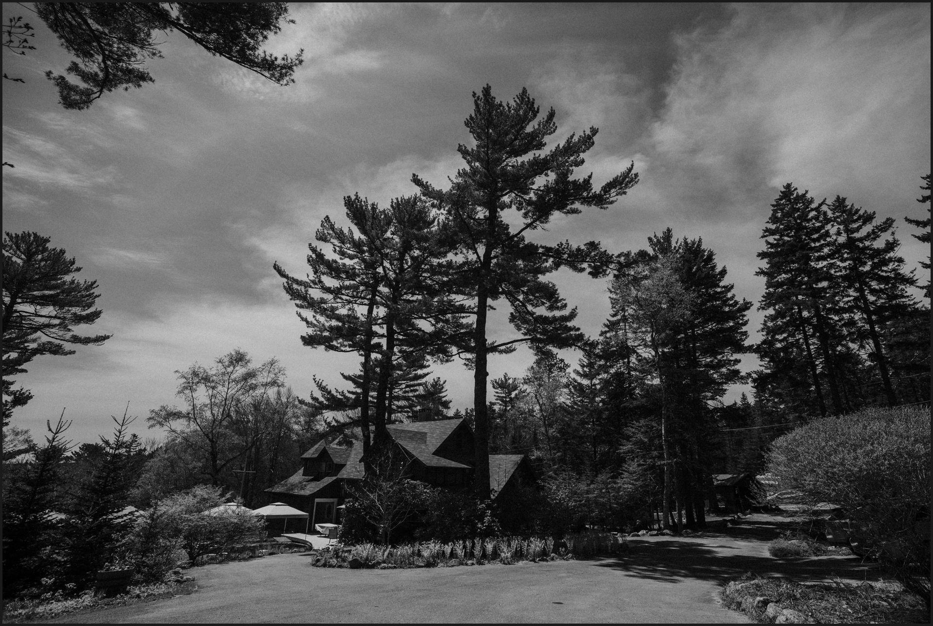 Southwest harbor, maine, black and white, cottage, forest, acadia national park,
