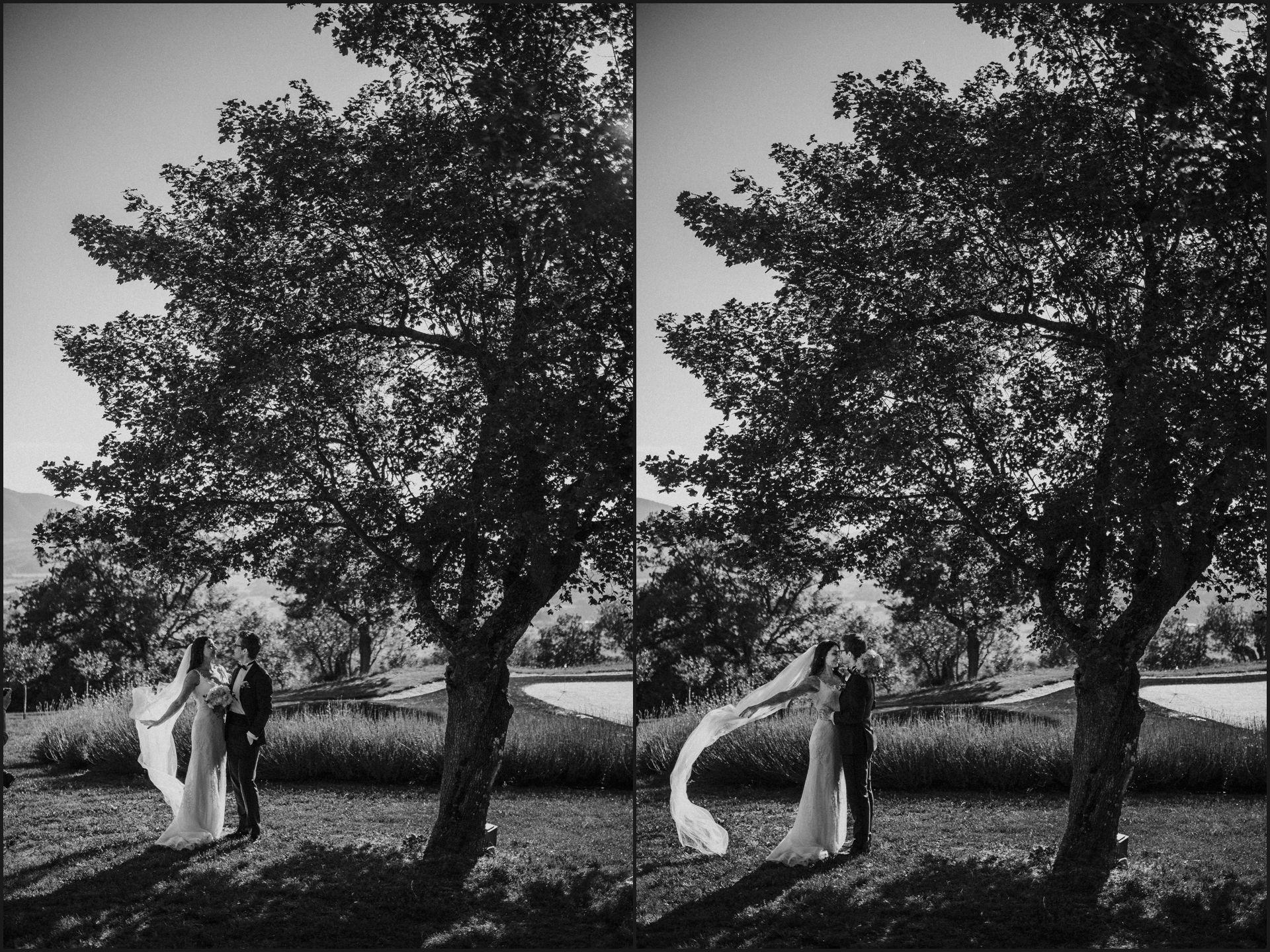 black and white, wedding, umbria, nikis resort, bride, groom, veil, tree, rustic