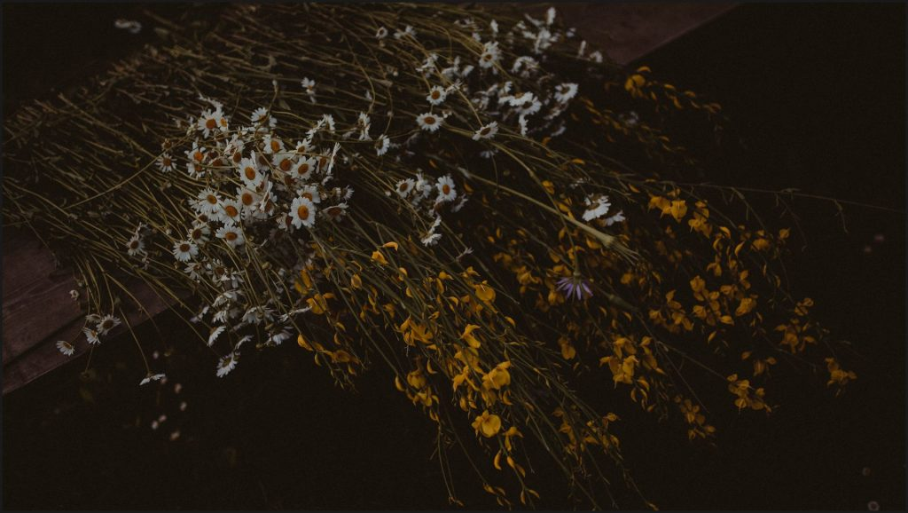 field flowers, tuscany, alternative wedding